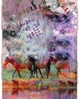 Baumwolljersey- Panel Wildpferde von Stenzo